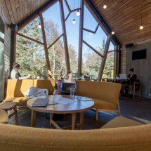 Hermoso café en los jardines botánicos de Islandia
